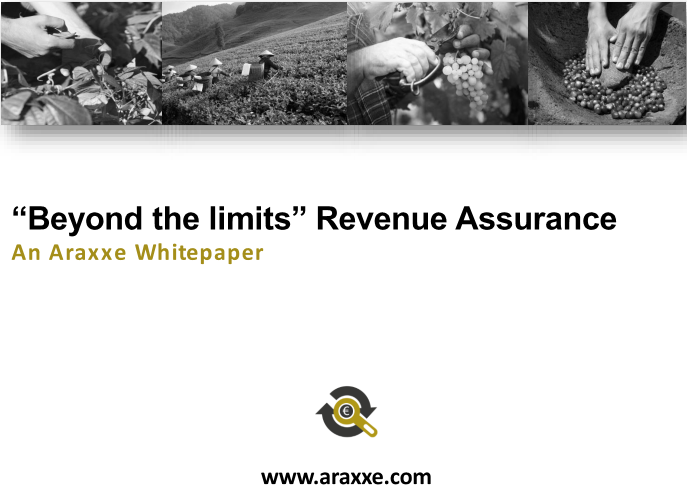 "HOME - Whitepaper ""Beyond the limits"" Revenue Assurance"
