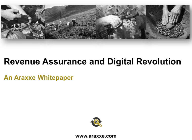 Blog - Revenue Assurance and Digital Revolution